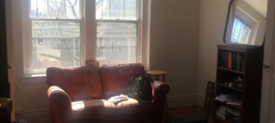 Sunny 1 Bedroom Sublet for June + July on Dwight Street