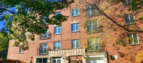 Housing Near Northwestern 3 Bedrooms Newly Rehabbed for 9/2020 Steps from NU and DT Evanston