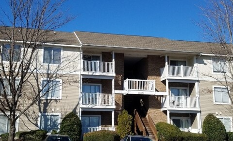 Apartments Near Queens $395 All-Inclusive - University Terrace for Queens University of Charlotte Students in Charlotte, NC