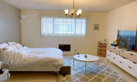 Apartments Near Pepperdine Large Spacious Room for Rent PRICE REDUCED for Pepperdine University Students in Malibu, CA