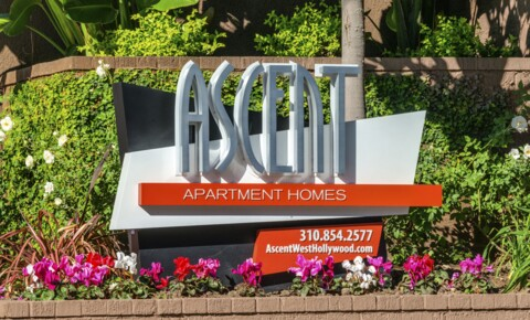 Apartments Near UCLA Ascent for University of California - Los Angeles Students in Los Angeles, CA