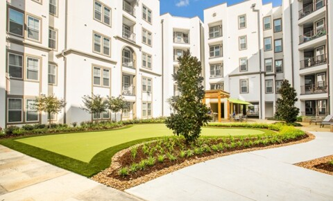 Apartments Near LSU Lark Baton Rouge for Louisiana State University Students in Baton Rouge, LA