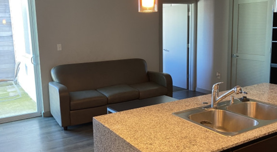 XL 2 Bedroom Furnished Apartment With Parking Passes